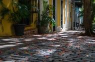 Colourful leaves and flowers along the cobbled Caleta de San Juan street in Old San Juan (Puerto RIco)