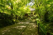 Tranquil garden near Jōjakukō-ji temple in the Arashiyama district of Kyoto (Japan)